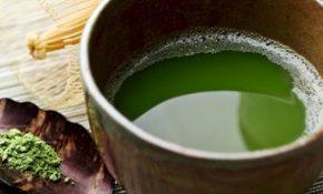 Uống nước từ lá lốt có tác dụng chữa viêm da cơ địa