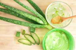 Bỏ túi 10 cách chữa mề đay bằng cây thuốc nam theo dân gian