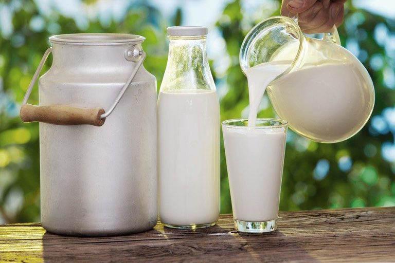 Sữa và các chế phẩm từ sữa giúp bôi trơn và tái tạo sụn khớp hiệu quả