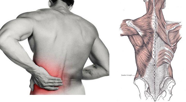 Các bệnh lý xương khớp cũng là nguyên nhân gây đau lưng khó vận động