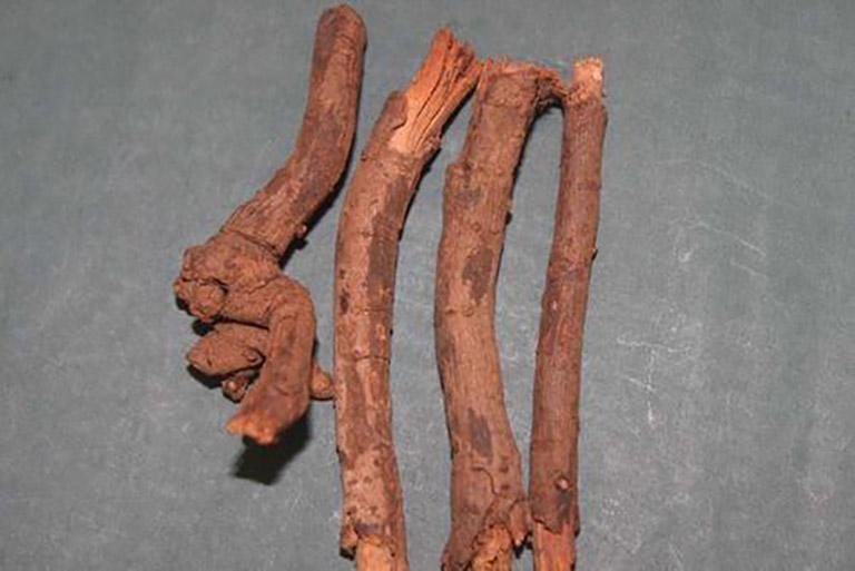 Rễ cây bạch hoa là nguyên liệu quan trọng trong trị lác đồng tiền ở tay chân