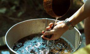 Cách trị nấm da đầu bằng bồ kết tại nhà đơn giản hiệu quả