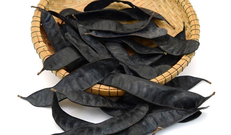 Bồ kết có nhiều công dụng hữu ích cho tóc và da đầu
