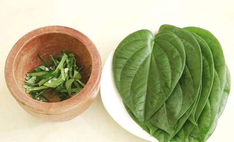 Kết hợp rau răm với lá trầu không - Bài thuốc trị hắc lào hữu hiệu
