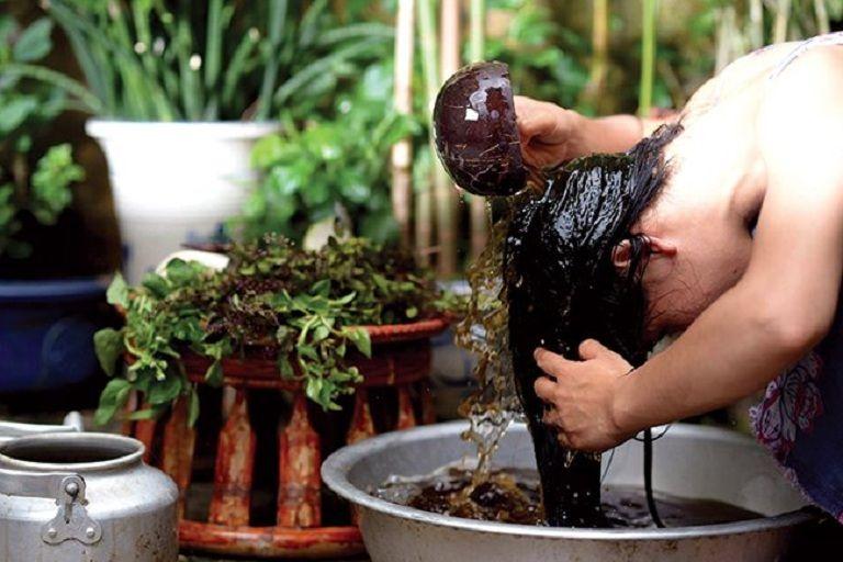 Gội đầu bằng nước bồ kết giúp giảm tình trạng ngứa ngày do bệnh gây ra