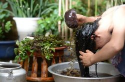 Mẹo trị viêm da dầu tại nhà