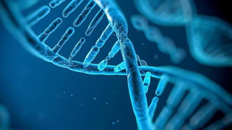 Di truyền là một trong những yếu tố gây bệnh