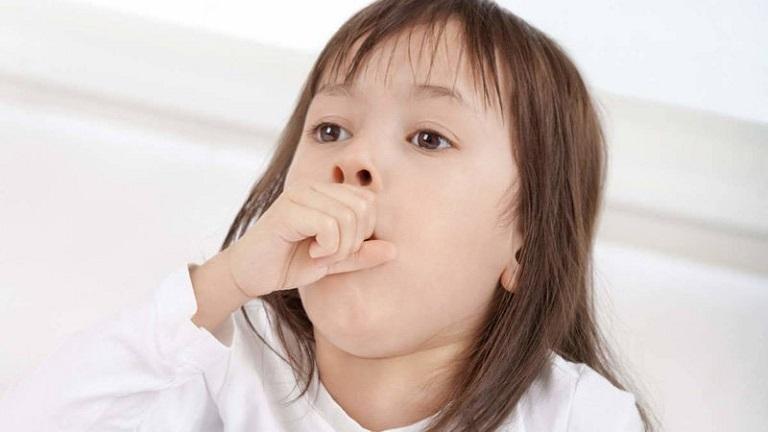 Trẻ hít phải lông mèo có thể lên cơ hen suyễn hoặc bị lo liên tục