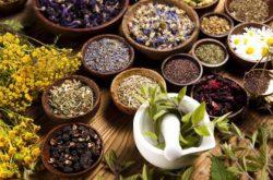 Lưu ý khi sử dụng các cây thuốc Nam chữa thoái hóa khớp gối