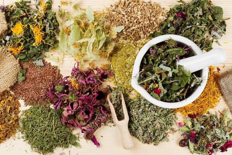 Các bài thuốc Đông y giúp tăng dịch chất nhờn và giảm đau nhức