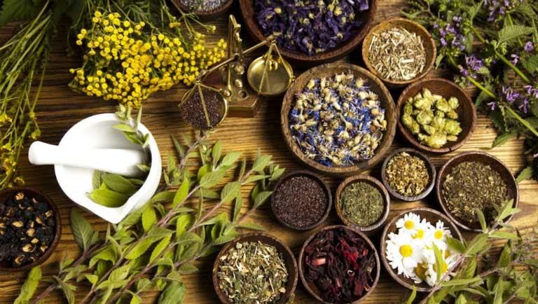 Bài thuốc Đông y điều trị thoát vị đĩa đệm bằng đường uống