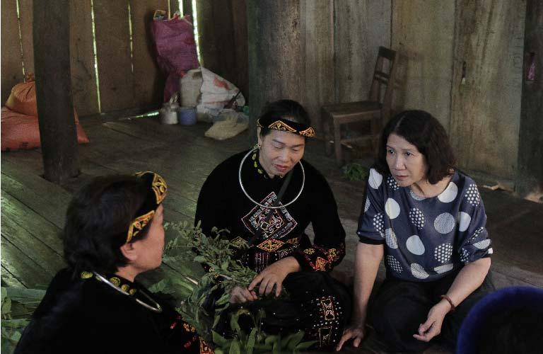 Bác sĩ Tuyết Lan cùng đội ngũ nghiên cứu khi đi thực địa tìm cây thuốc